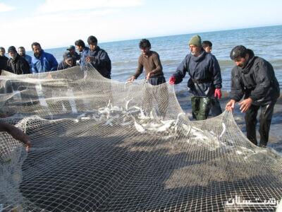 تمدیدمهلت صید ماهیان استخوانی در نوار ساحلی گیلان